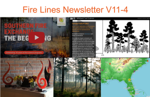 Preview of Images from Fire Lines Issue 11-4