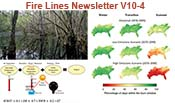 Fire Lines Newsletter Volume 10 Issue 4