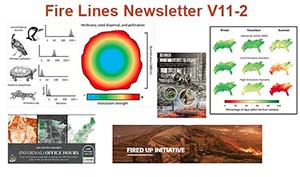 Fire Lines Newsletter Volume 11 Issue 2